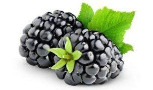 Blackberries Keto Ketoask Keto Ask Keto Diet Guide Keto Food Search