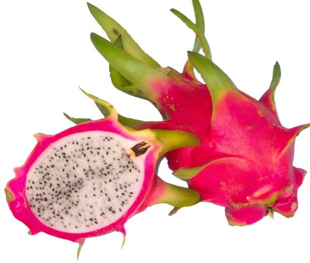Is Dragon Fruit Keto Ketoask Keto Ask Keto Diet Guide Keto Food Search