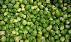 Are Brussels Sprouts Ketoask Keto Ask Keto Diet Guide Keto Food Search