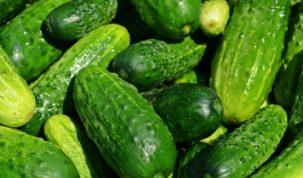 Is Cucumber Keto Ketoask Keto Ask Keto Diet Guide Keto Food Search