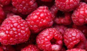 Is Raspberry Keto Ketoask Keto Ask Keto Diet Guide Keto Food Search