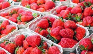 Is Strawberry Keto Ketoask Keto Ask Keto Diet Guide Keto Food Search