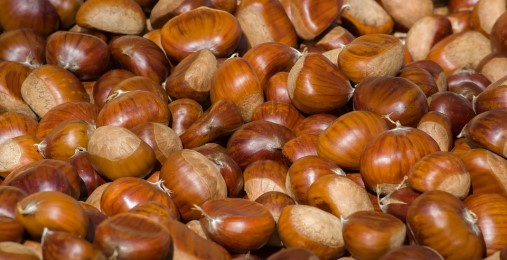 keto diet and chestnuts