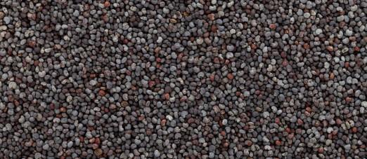 Are Poppy Seeds Keto Friendly Ketoask keto ask learn keto friendliness