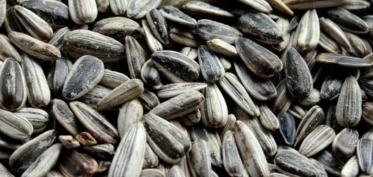 Are Sunflower Seeds Keto Friendly Ketoask keto ask learn keto friendliness