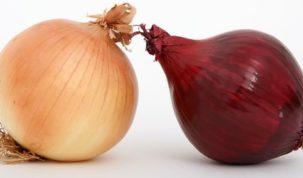 Is Onion Keto Ketoask Keto Ask Keto Diet Guide Keto Food Search