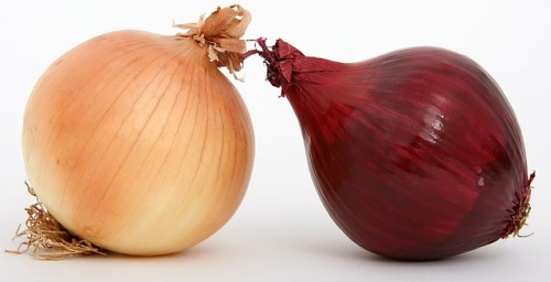 keto diet and onions