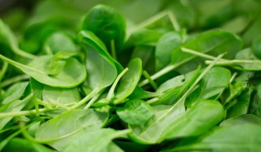 Is Spinach Keto Ketoask Keto Ask Keto Diet Guide Keto Food Search