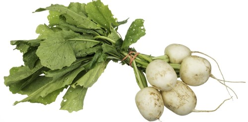 Is Turnip Keto Ketoask Keto Ask Keto Diet Guide Keto Food Search
