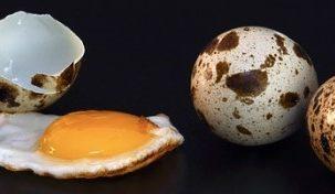 Quail Egg Keto Friendly Ketoask Keto Ask Keto Diet Guide Browser Keto Food Search